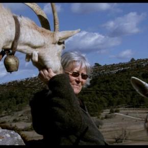 """""""Les chèvres de ma mère"""". N°629"""